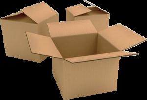 cutii de carton clasice (baxuri)